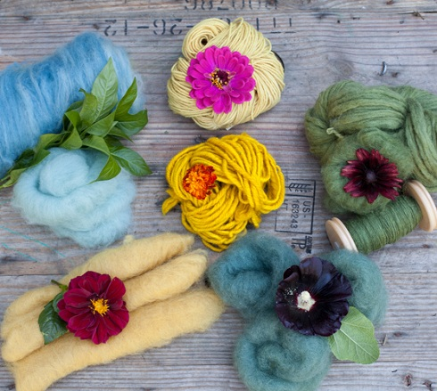 #6 dyers garden blog