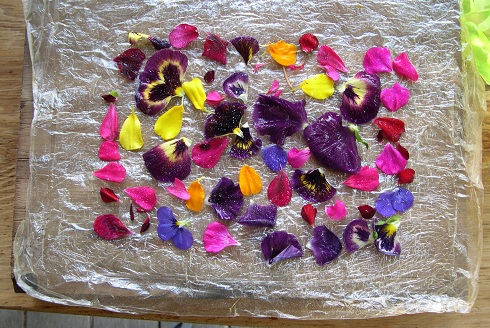 eco-dyeing paper (4)