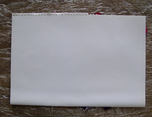 eco-dyeing paper (5)