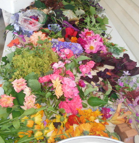 1ECO DYEING JULY 11, 2014 AT DOROTHY THOM'S 002
