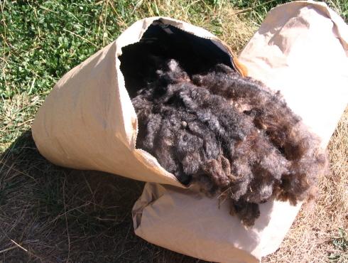 6Christmas Road fleece from Mocha